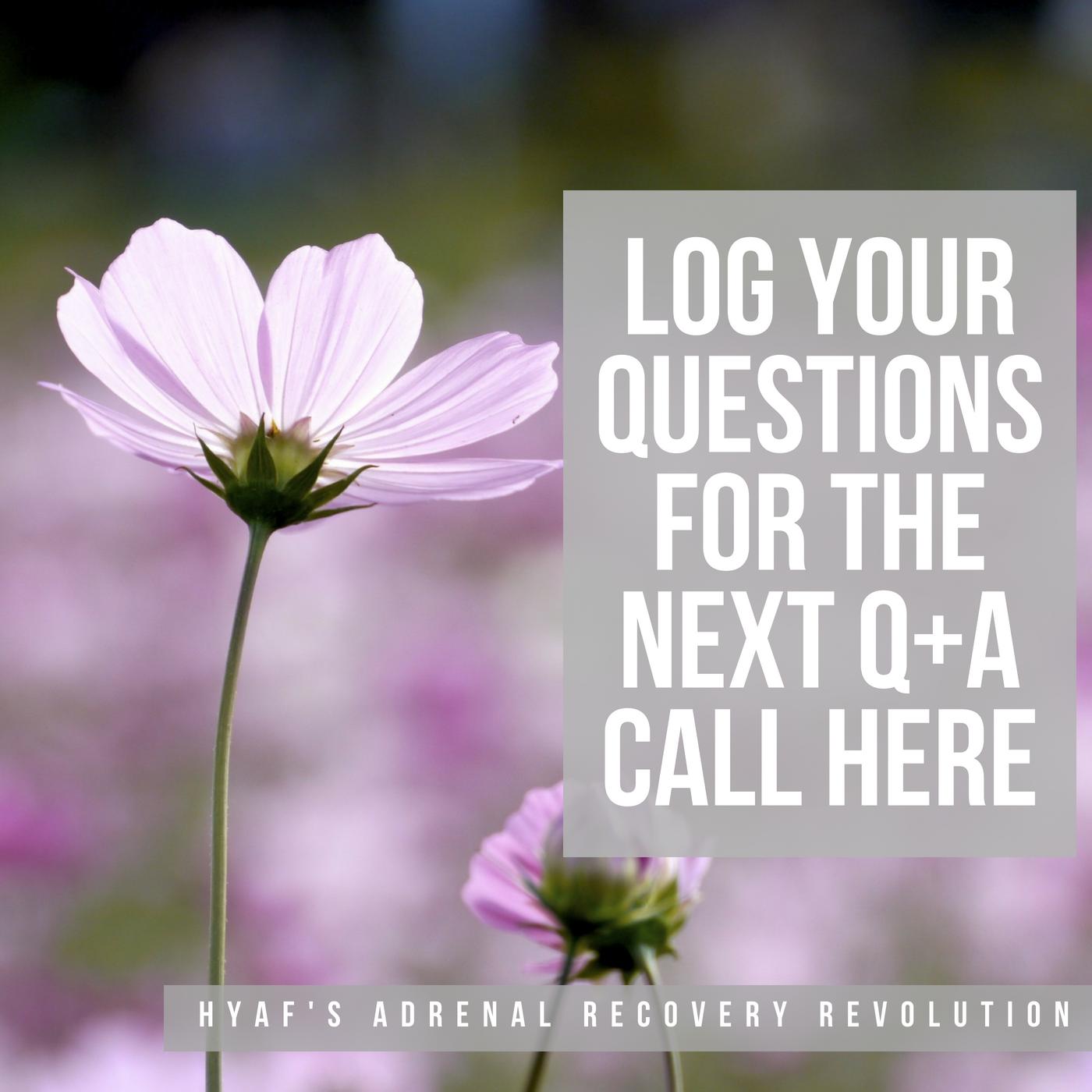 Questions Log