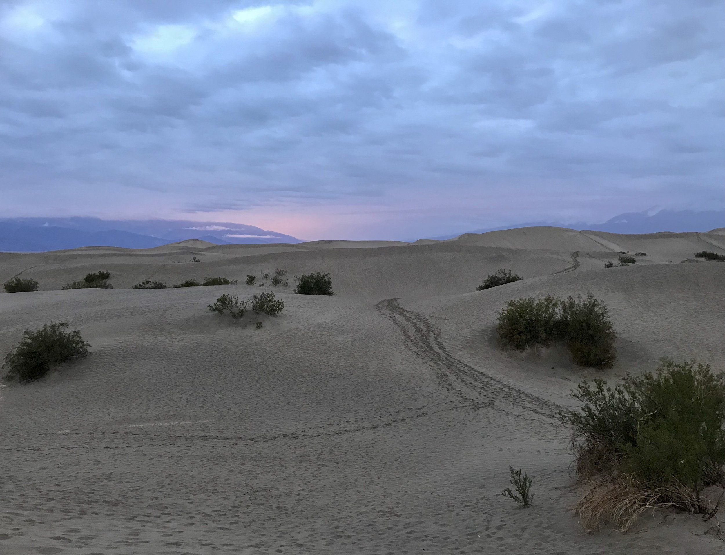 Sunset glow over the Mesquite Flat Sand Dunes in Winter. Death Valley, CA.  Photo By: Nichole McDaniel