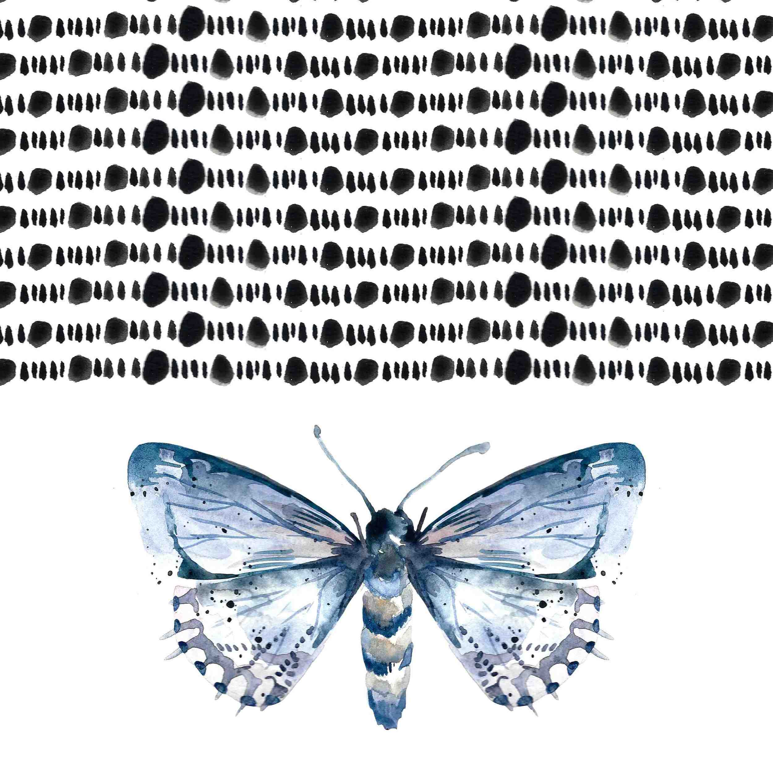 3_moth.jpg