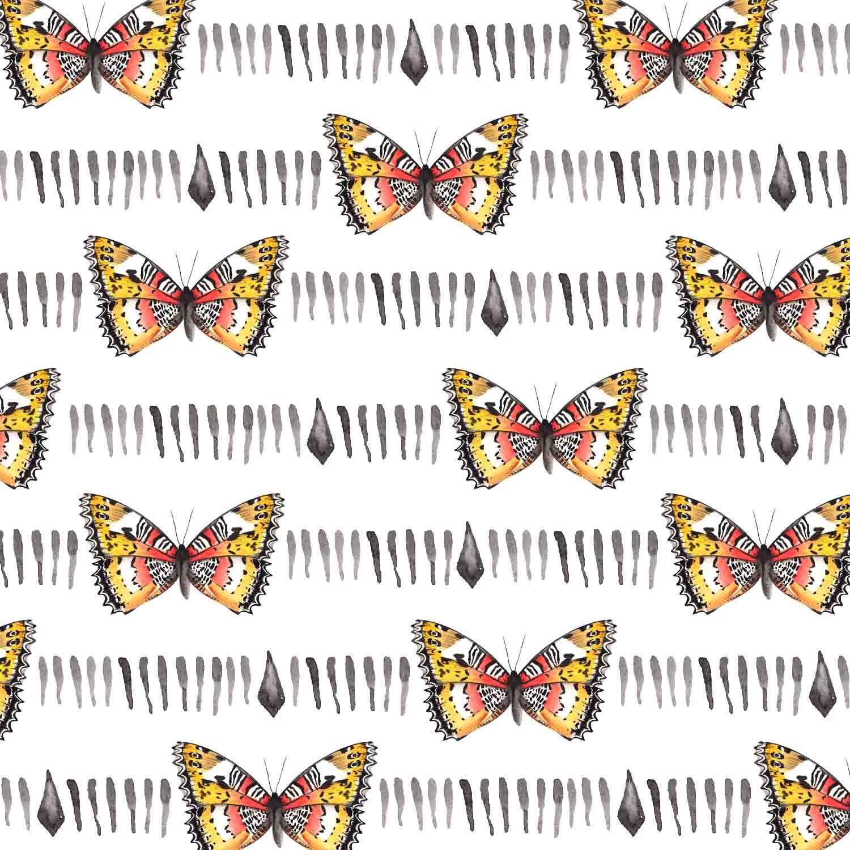 4_butterfly.jpg