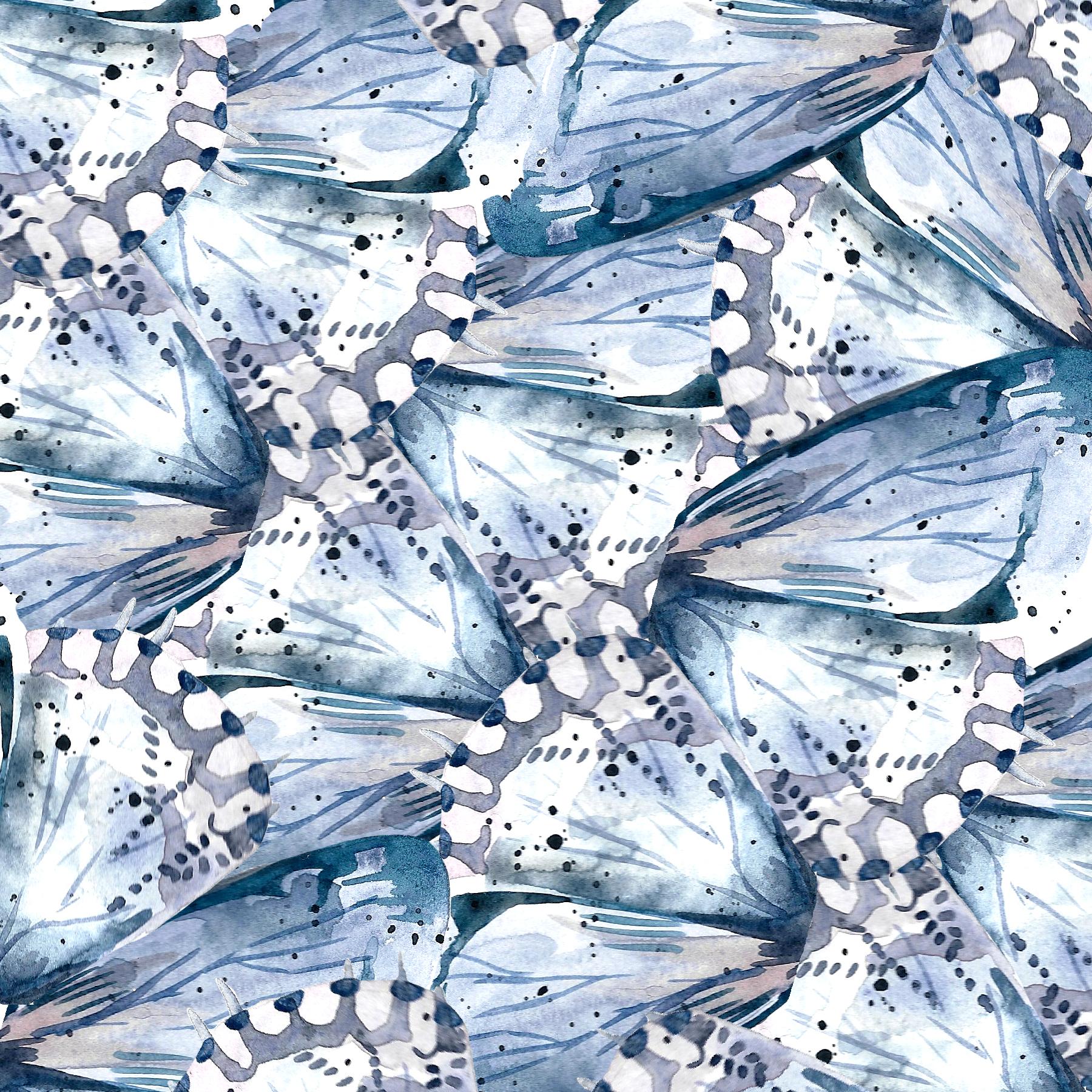 2_butterfly.jpg