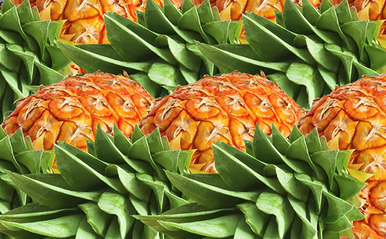 Hawaiian-Ola-Organic-Pineapple.png