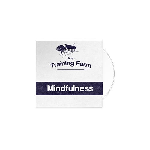 Mindfulness (mp3)
