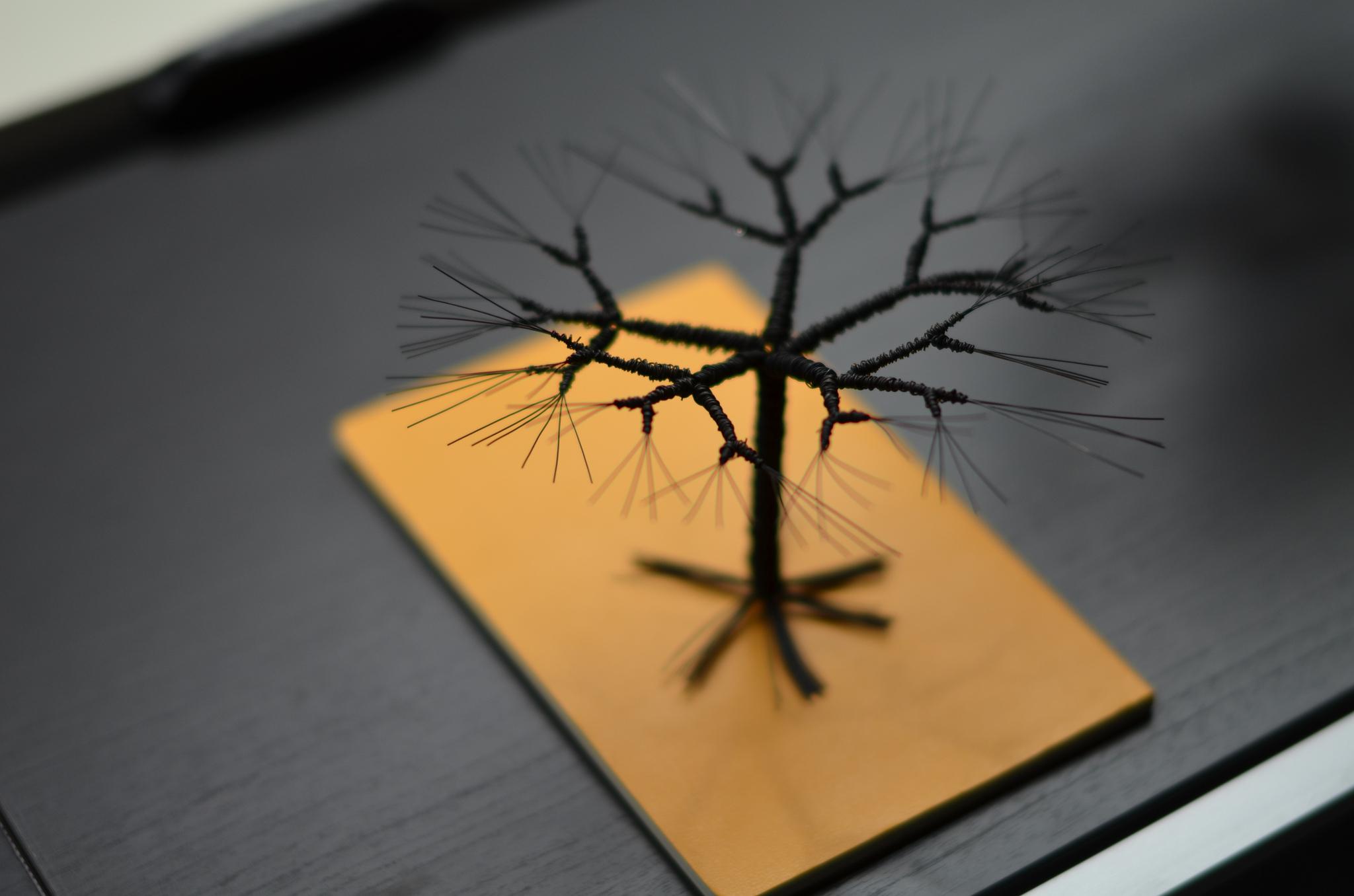 Accidental Tree