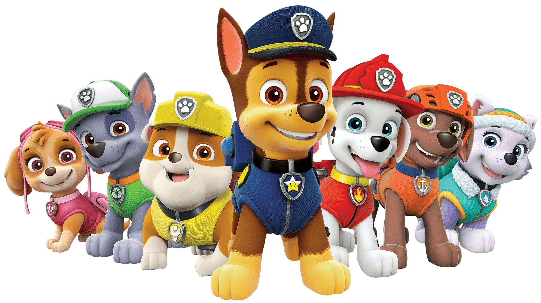 1508453421paw-patrol-all-characters-png.png