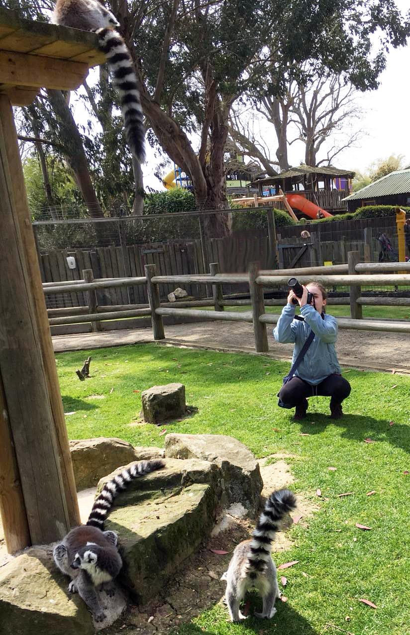 Emily Limb takes photos of lemurs.jpg