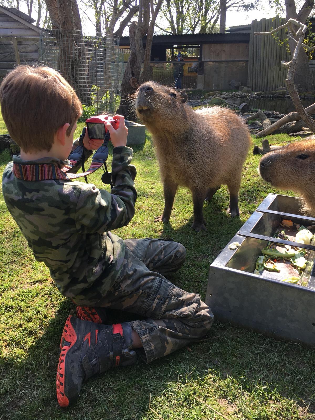 Capybara smiles for child photographer.jpg