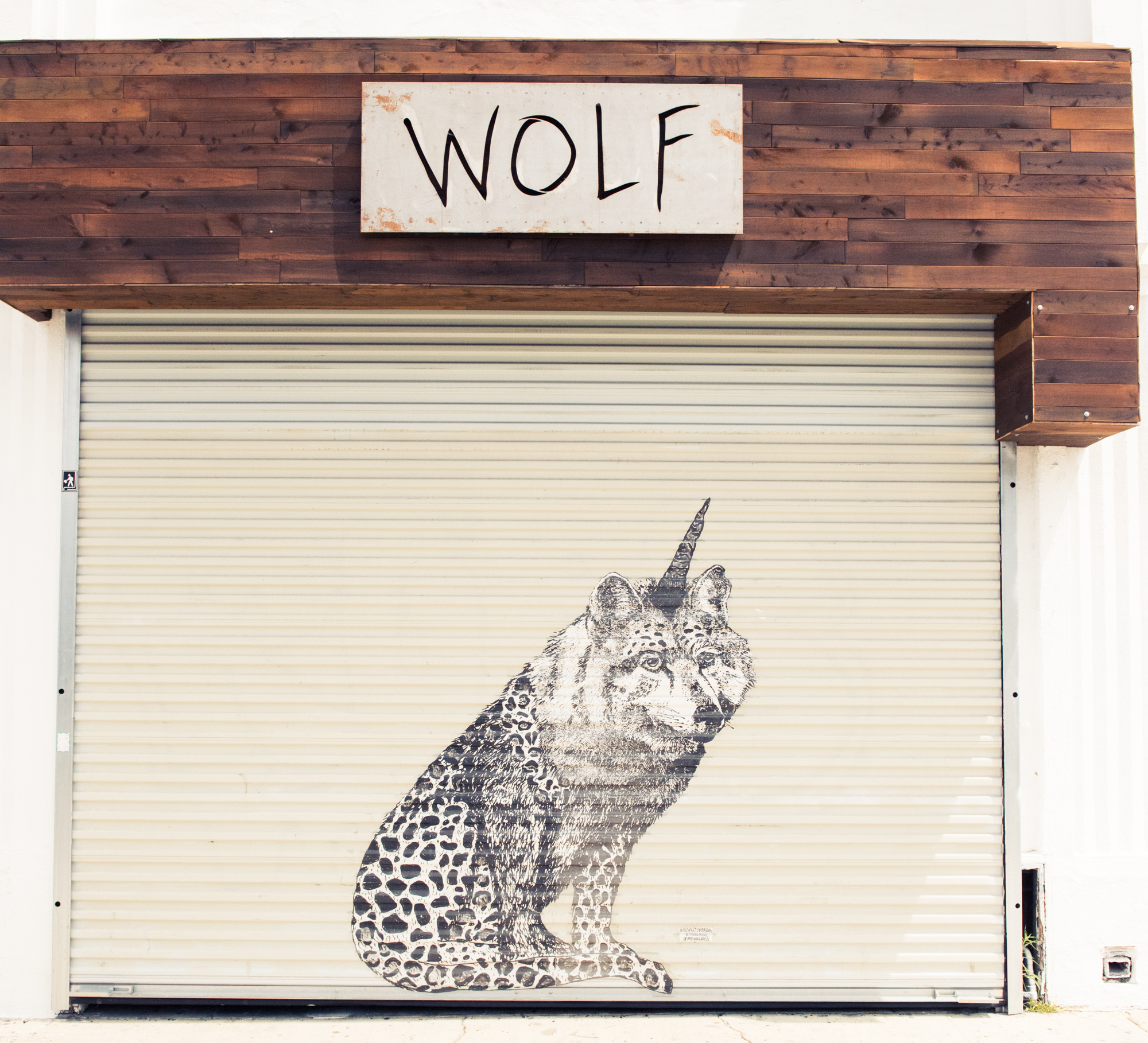 WOLF_Marcel_Vigneron-Jake Rosenberg-93 copy.jpg