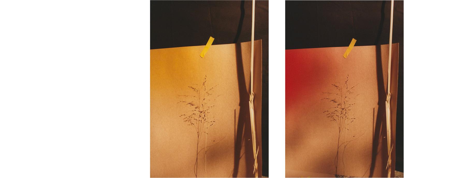 Lissome-Jack-Johnstone-Sustainable-Fashion9.jpg
