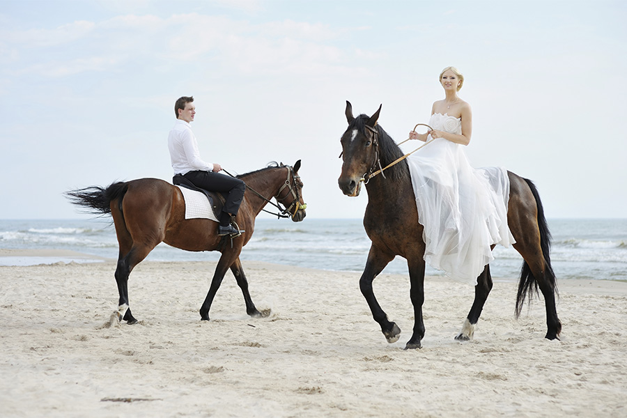 Natalie Skye Fancy and Free Noosa Elopement Saddle Up.jpg
