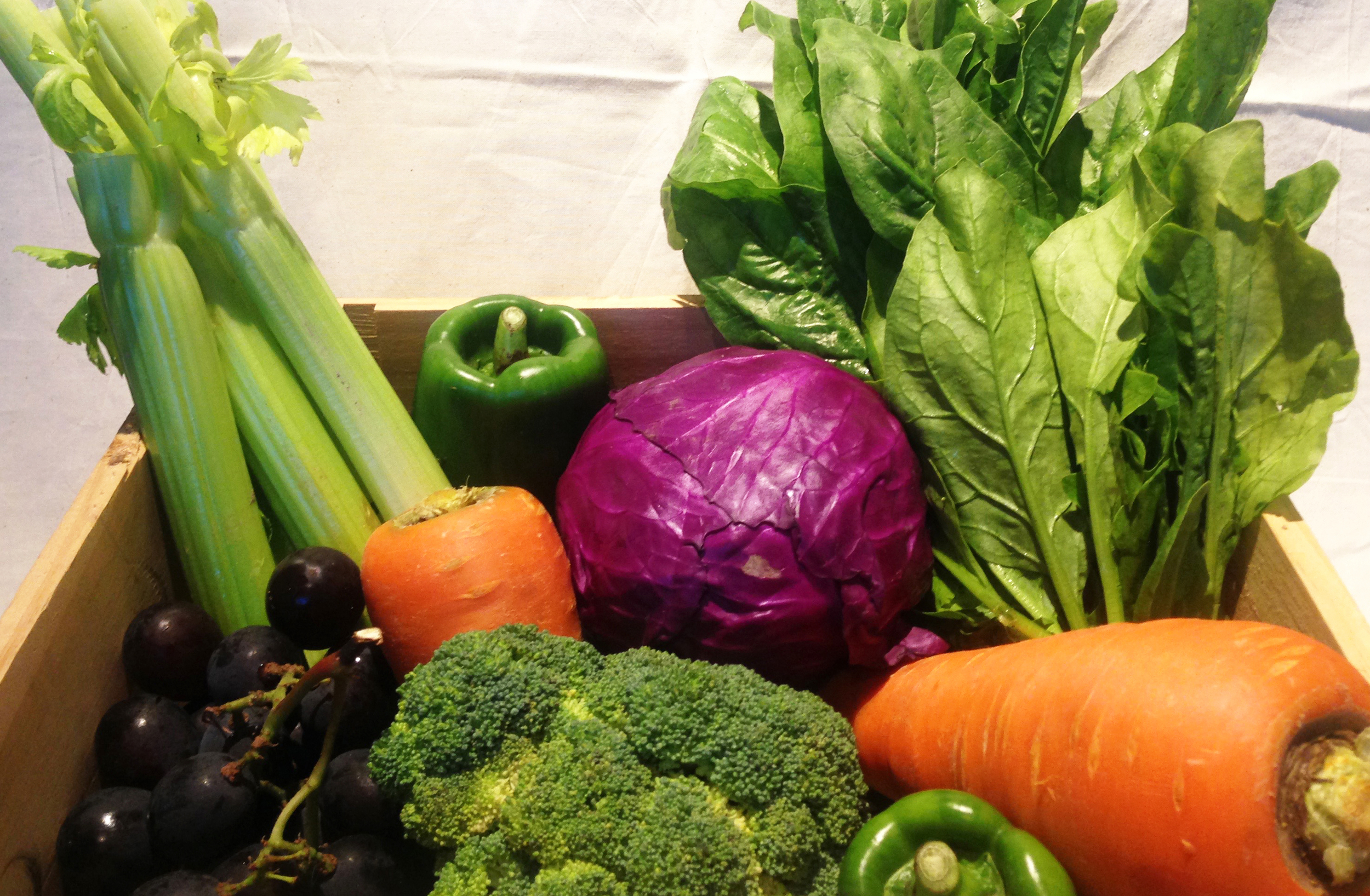 Research : Vegetable with strong vivid color in the market
