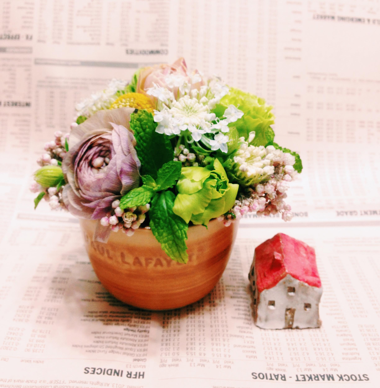 Small plant -