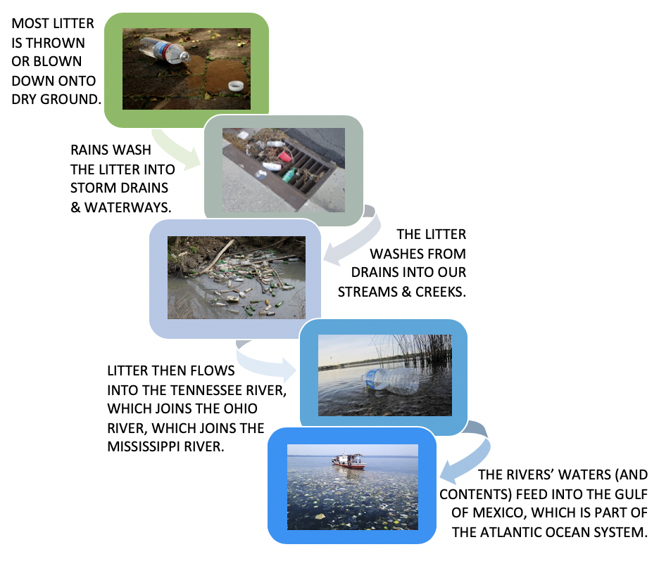 Litter Flow Graphic.png