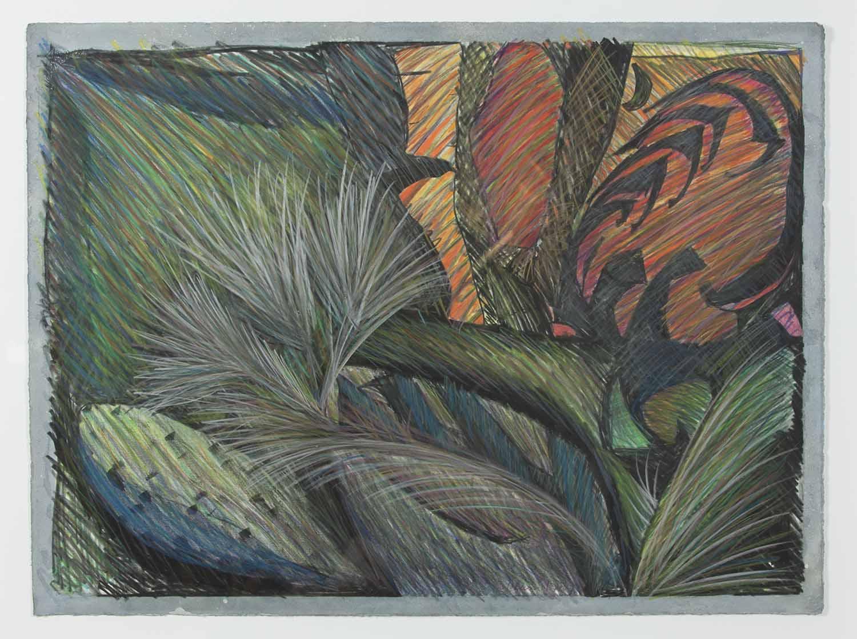 Tulum: Cactus