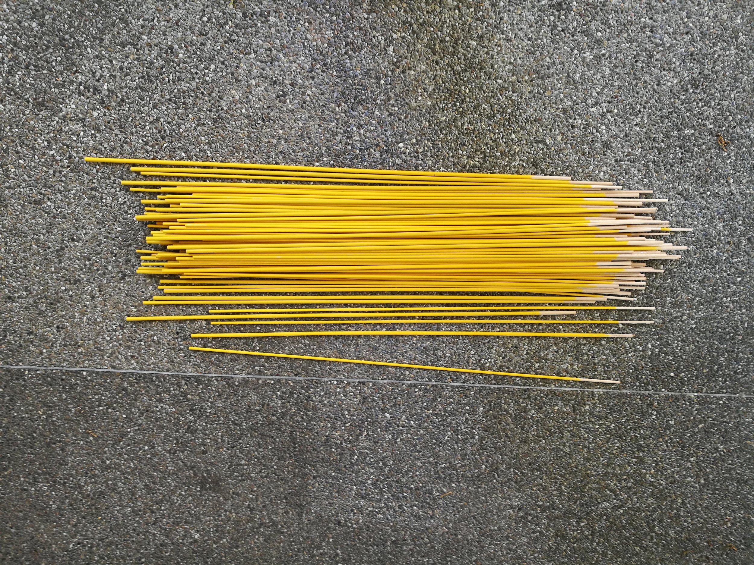 rosemary-niehaus-taraxacum-sticks.jpg