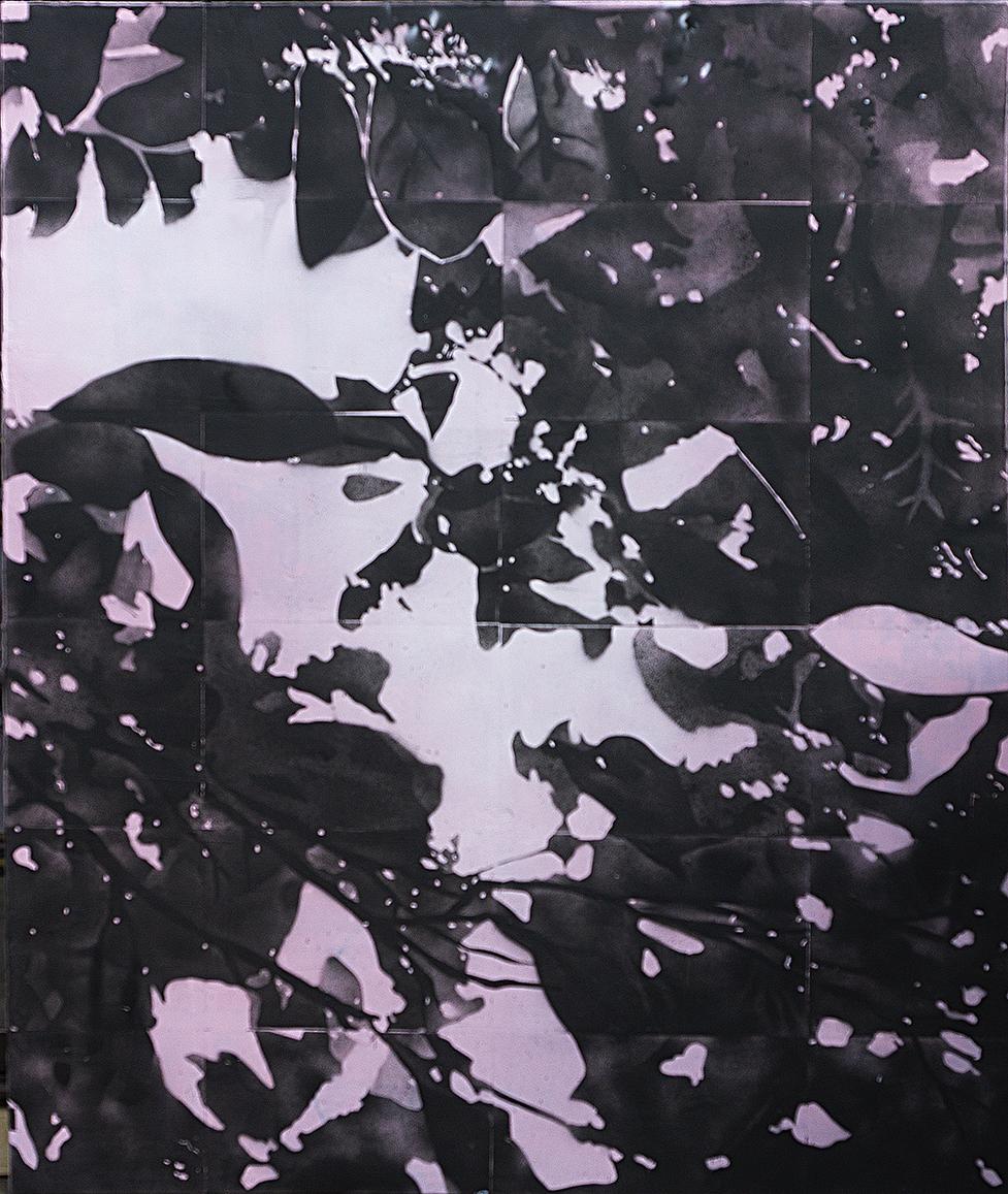 Phototrope 2  2018 acrylic on canvas 167 x 137 cm