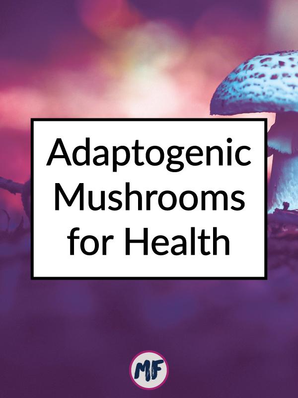 adaptogenic-mushrooms.jpg