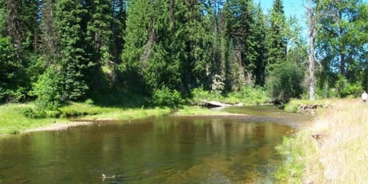 emerald-creek.jpg