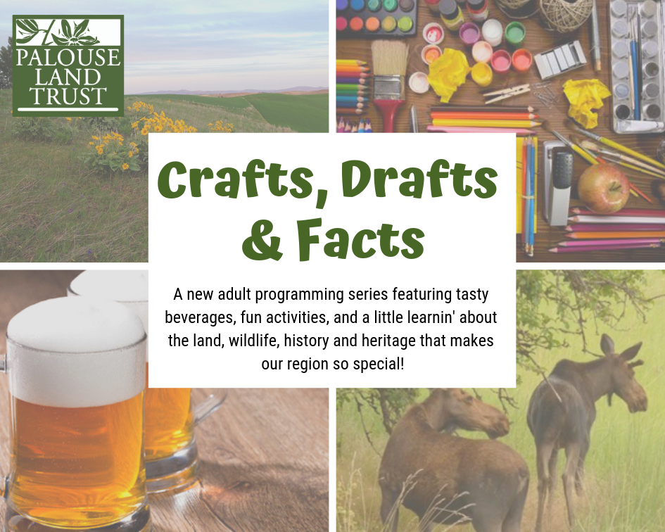 Crafts, Drafts, and Facts.png