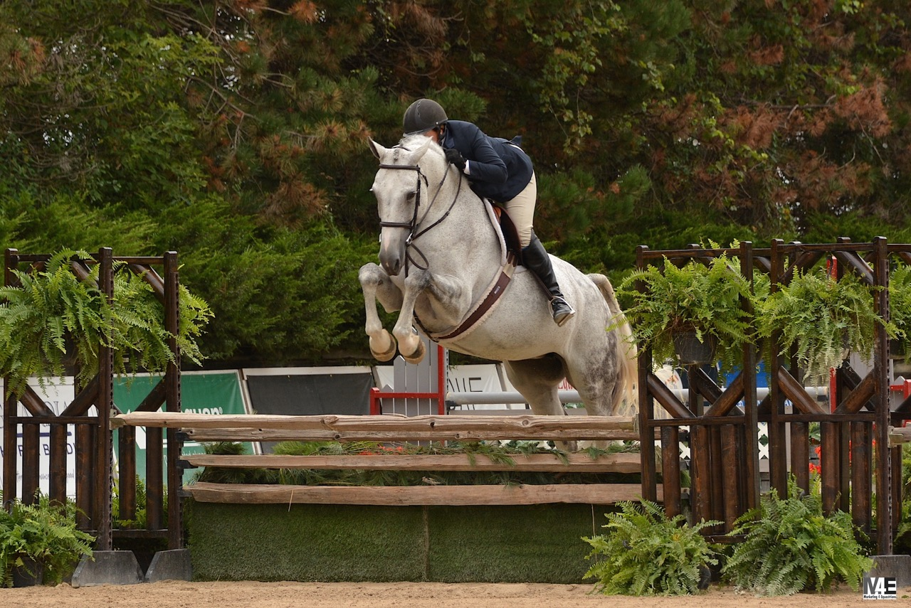 Hunter and jumper riders tackled the beautiful Grand Prix ring at Ledges Sporting Horses in Roscoe, Illinois for the 2016 USHJA Children's and Adult Amateur Jumper and Hunter Championships during the Showplace End of Summer Show.