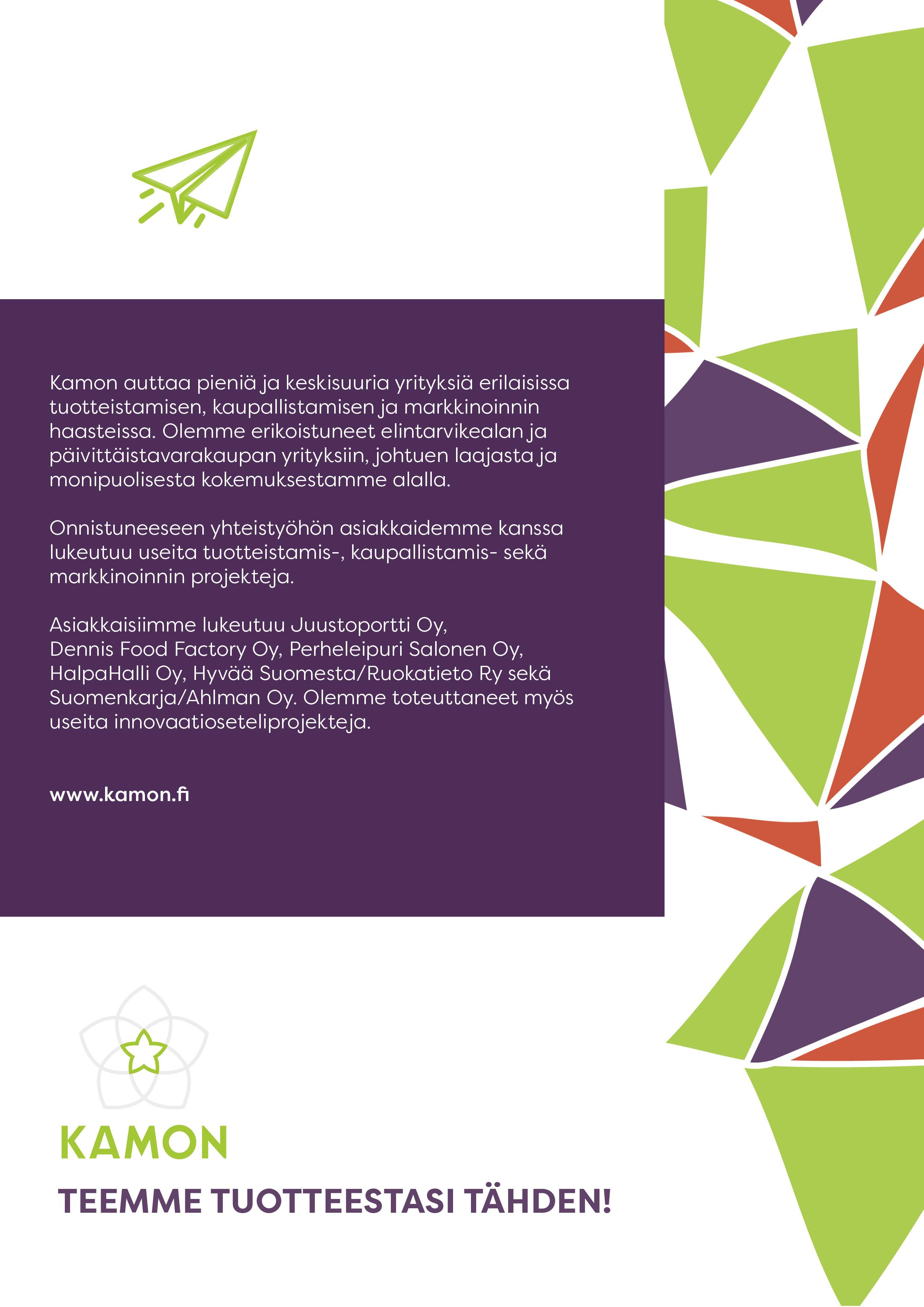 Innovaatioseteliesite kuvina sivu 4.jpg