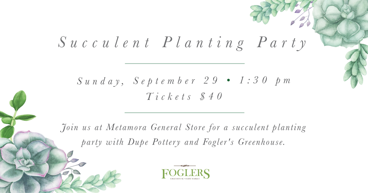 MG Succulent Planting Party 2-02.jpg