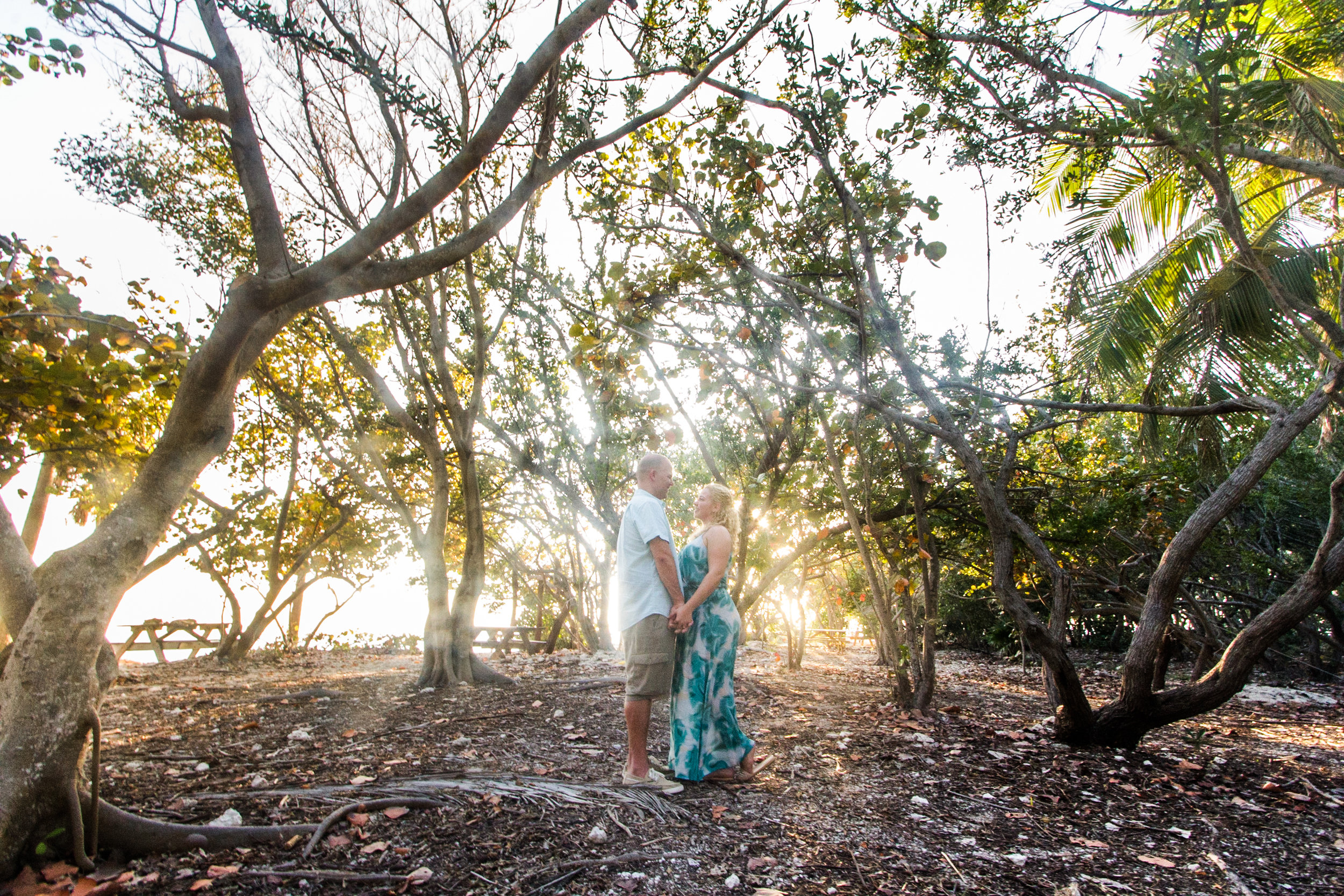 Couple enjoying the view under the trees during a recent engagement photo shoot at Fort Zachary Taylor state park in Key West.
