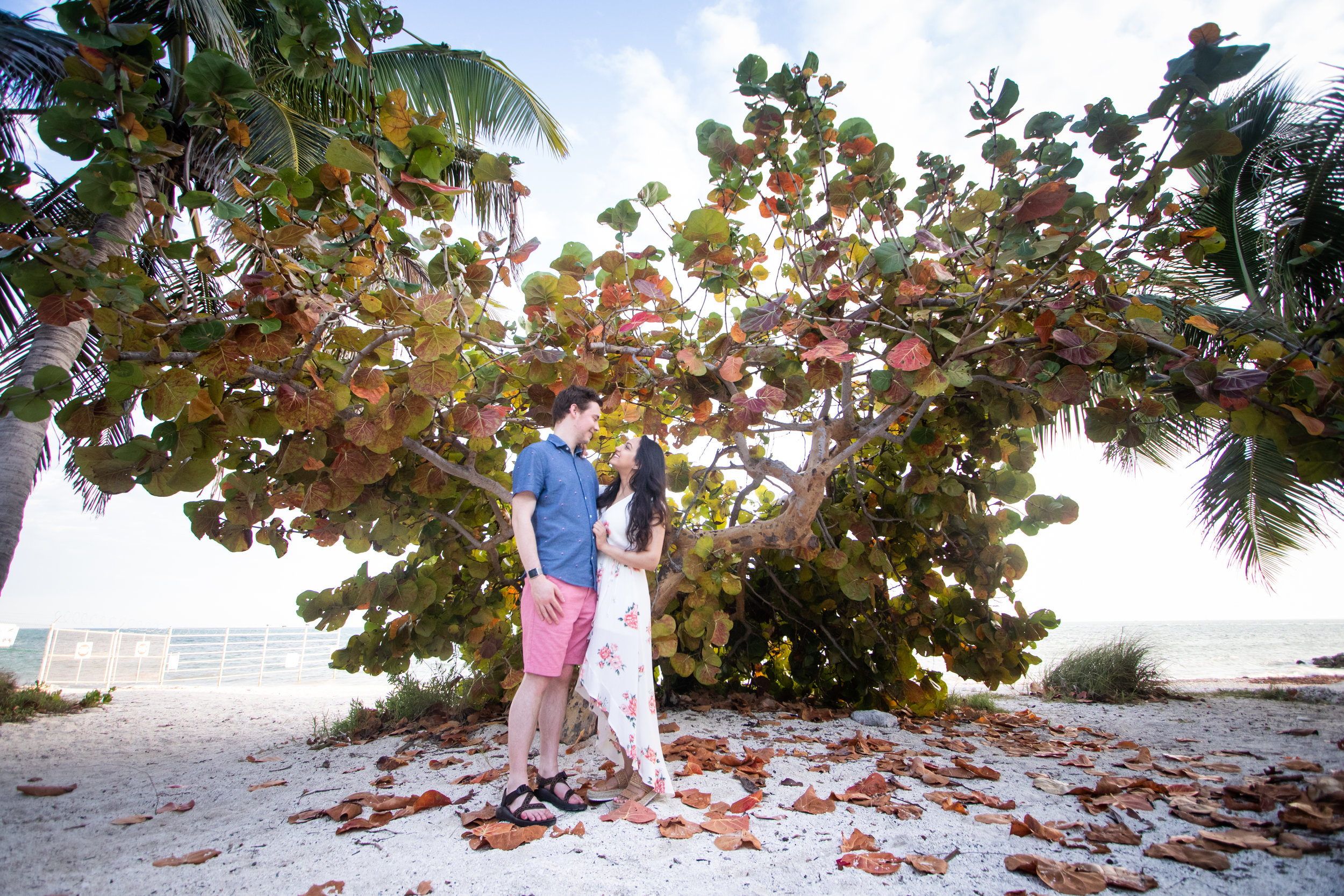 Sea Grape Bushes Make Great Backdrops for a Key West Engagement Photo SHoot.jpg
