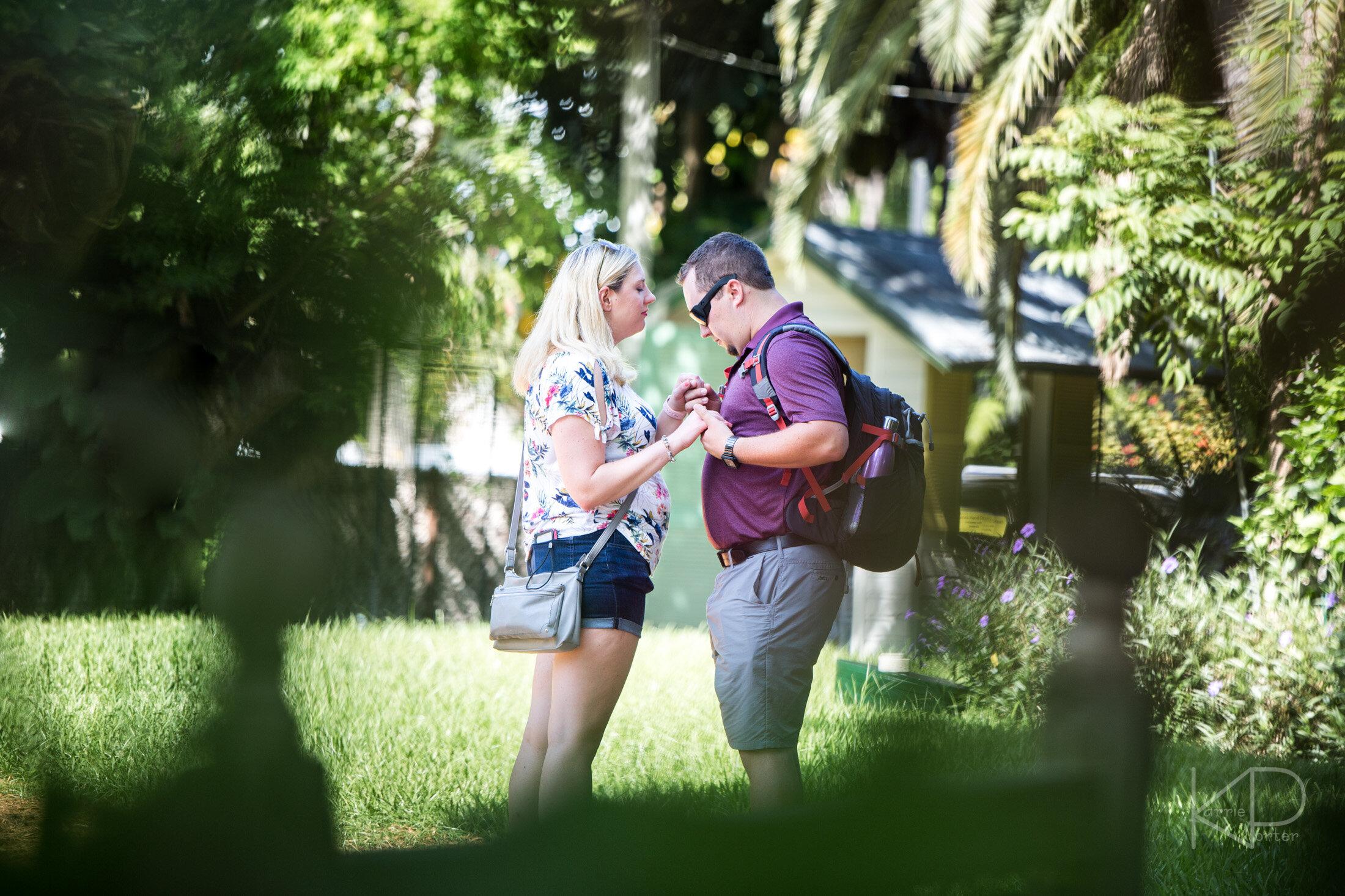 Ernest Hemingway Home Undercover Proposal
