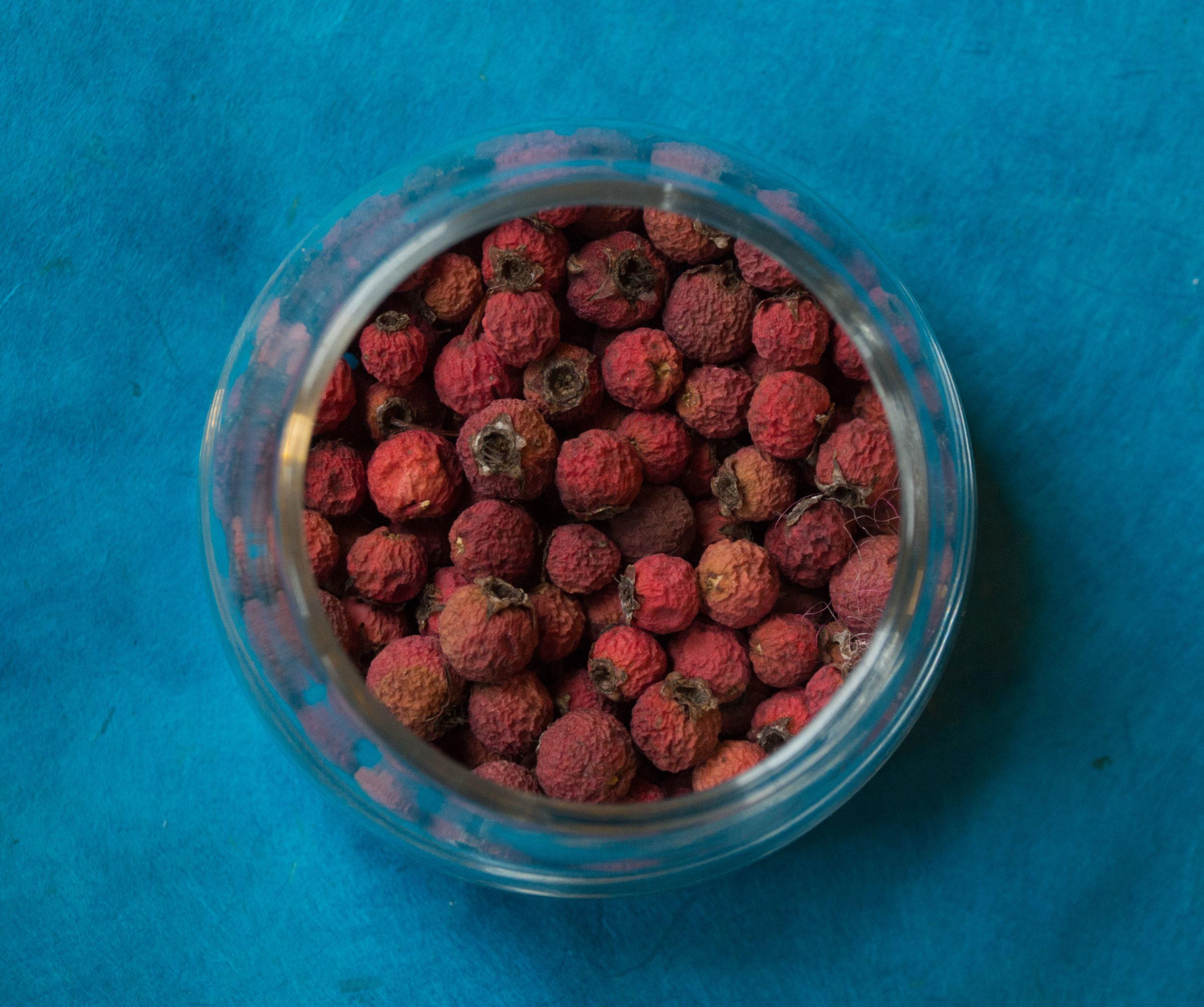 Dried hawthorn berries.