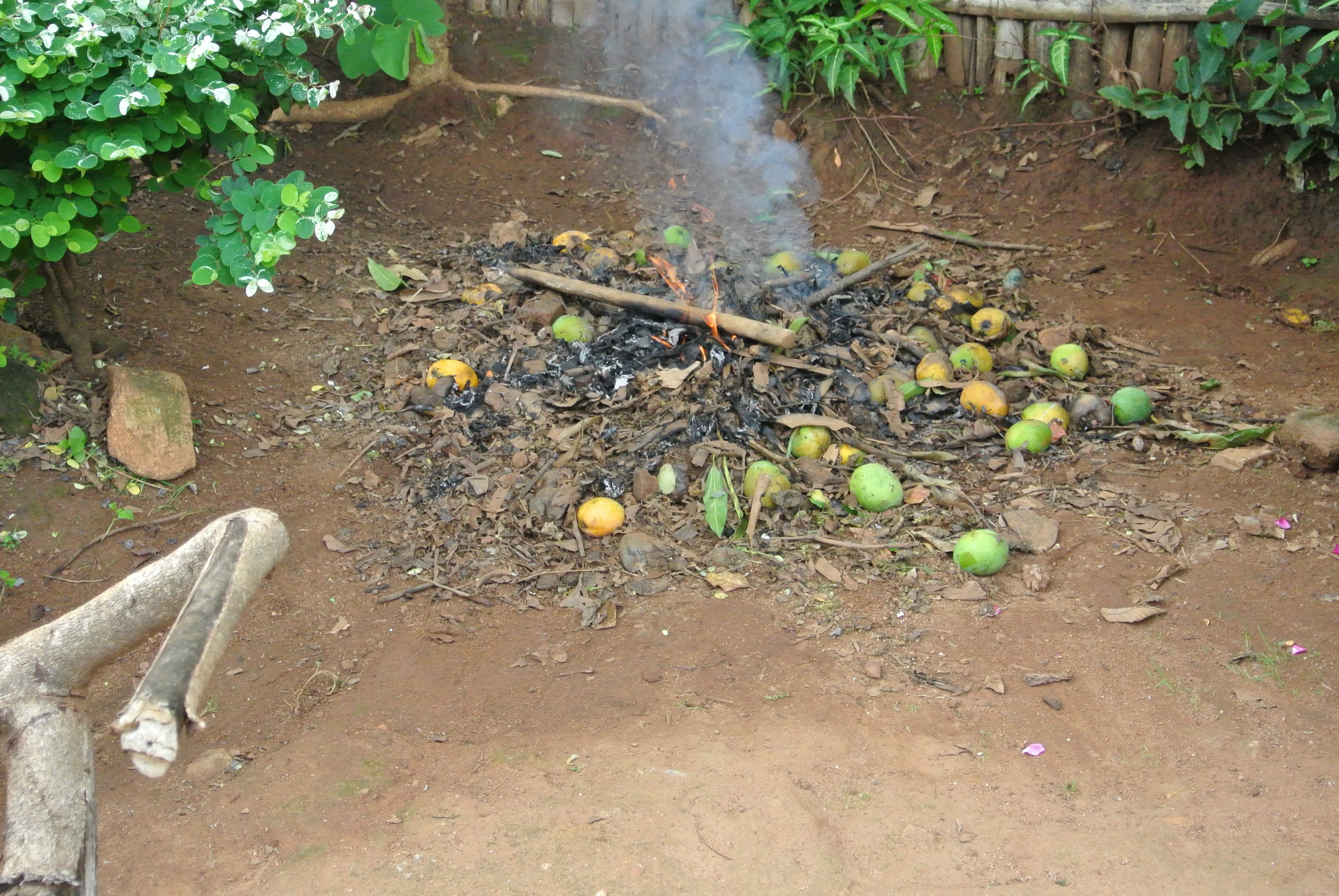 Burning organic material to create charcoal in Malawi.