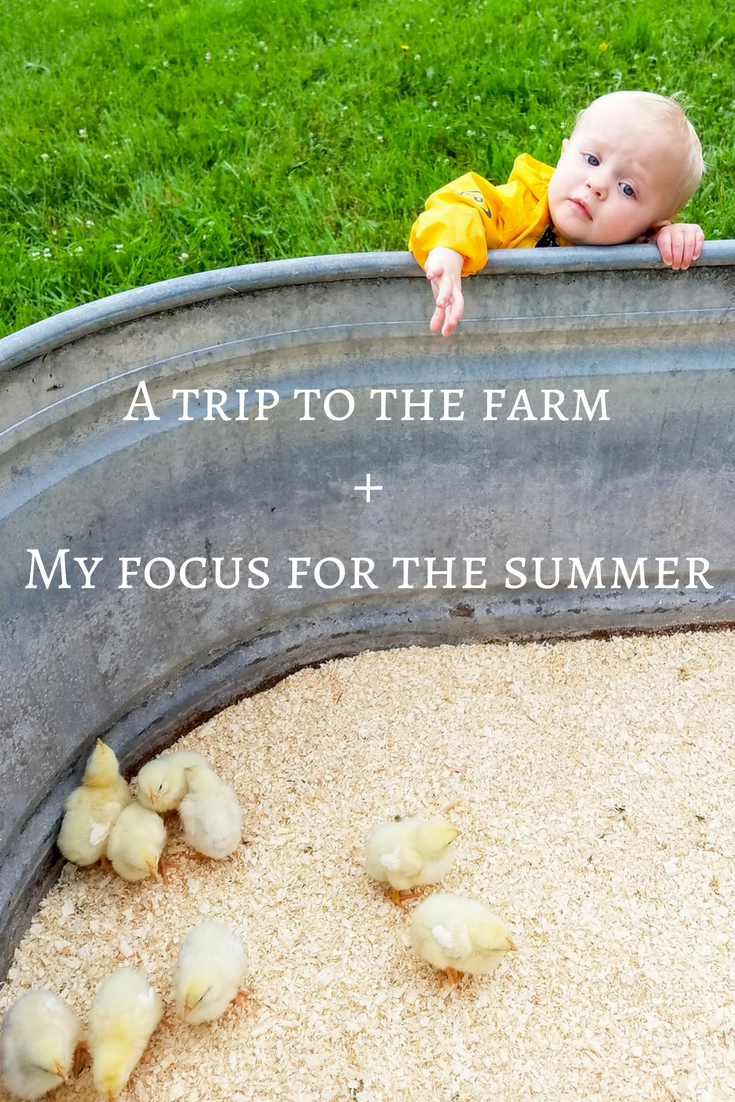 I'm focusing my energy this summer on my relationship to food and body image, starting with getting a farm share and a visit to the farm that will produce our food. Not only am I trying to be really intentional about what I'm eating and where the food is coming from, but I'm also doing my best to parent with intention and think hard about the lessons I'm trying to teach my children. Read more at marimelby.com. #intentionalliving #localfood #bodypositive #bodyimage #intentionalparenting #parenting