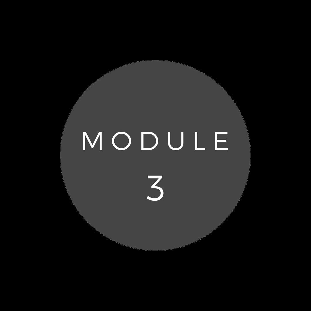 Copy of Copy of MODULE 3
