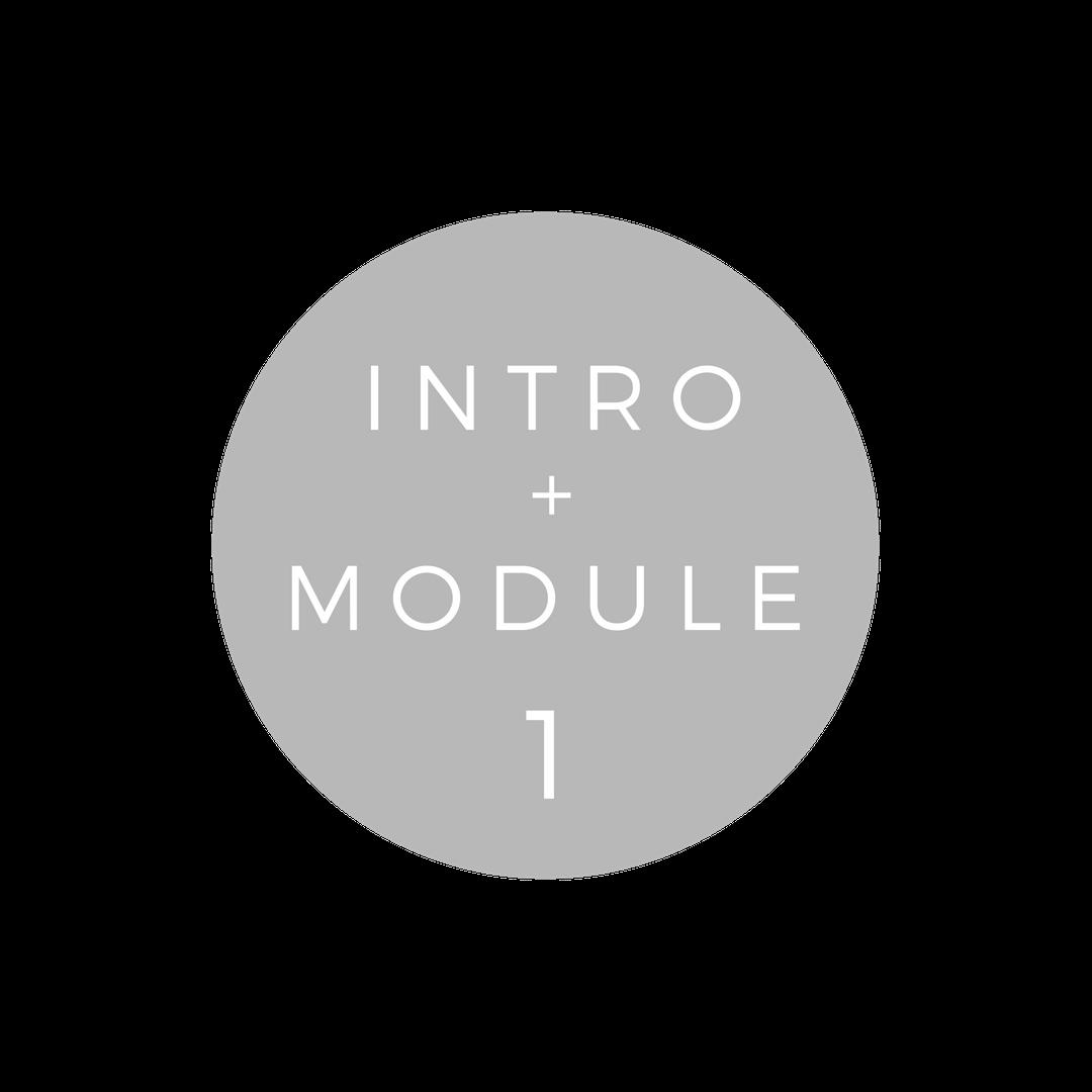 Copy of Copy of INTRO + MODULE 1