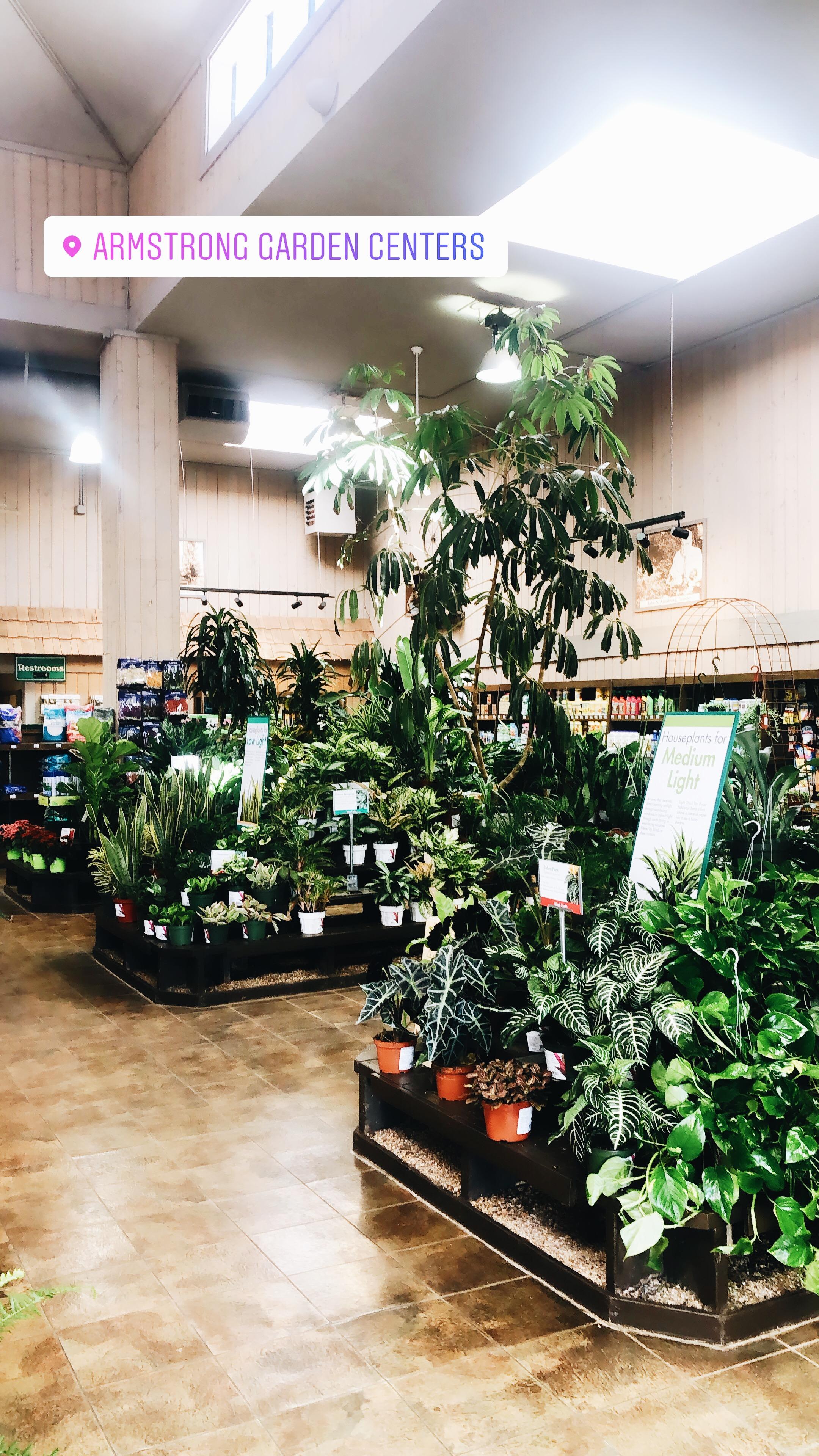 armstrong garden center.JPG