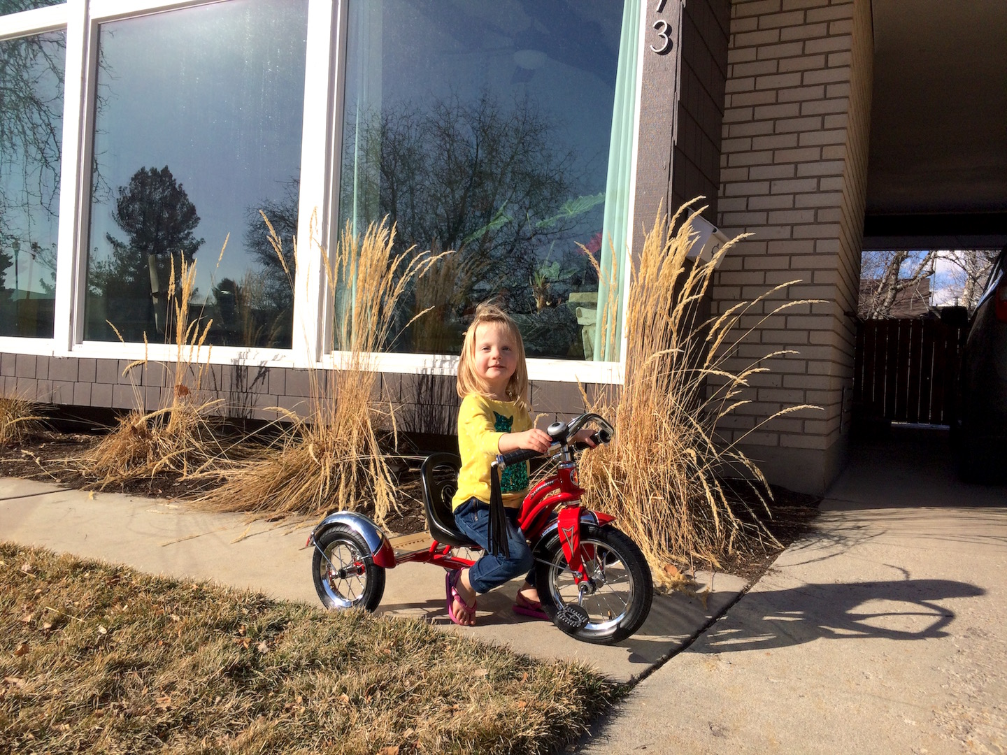Penny on her Schwinn Tricycle.