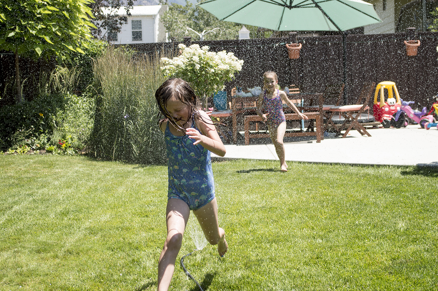 Abbey and Maliya spent the afternoon running in the sprinklers.