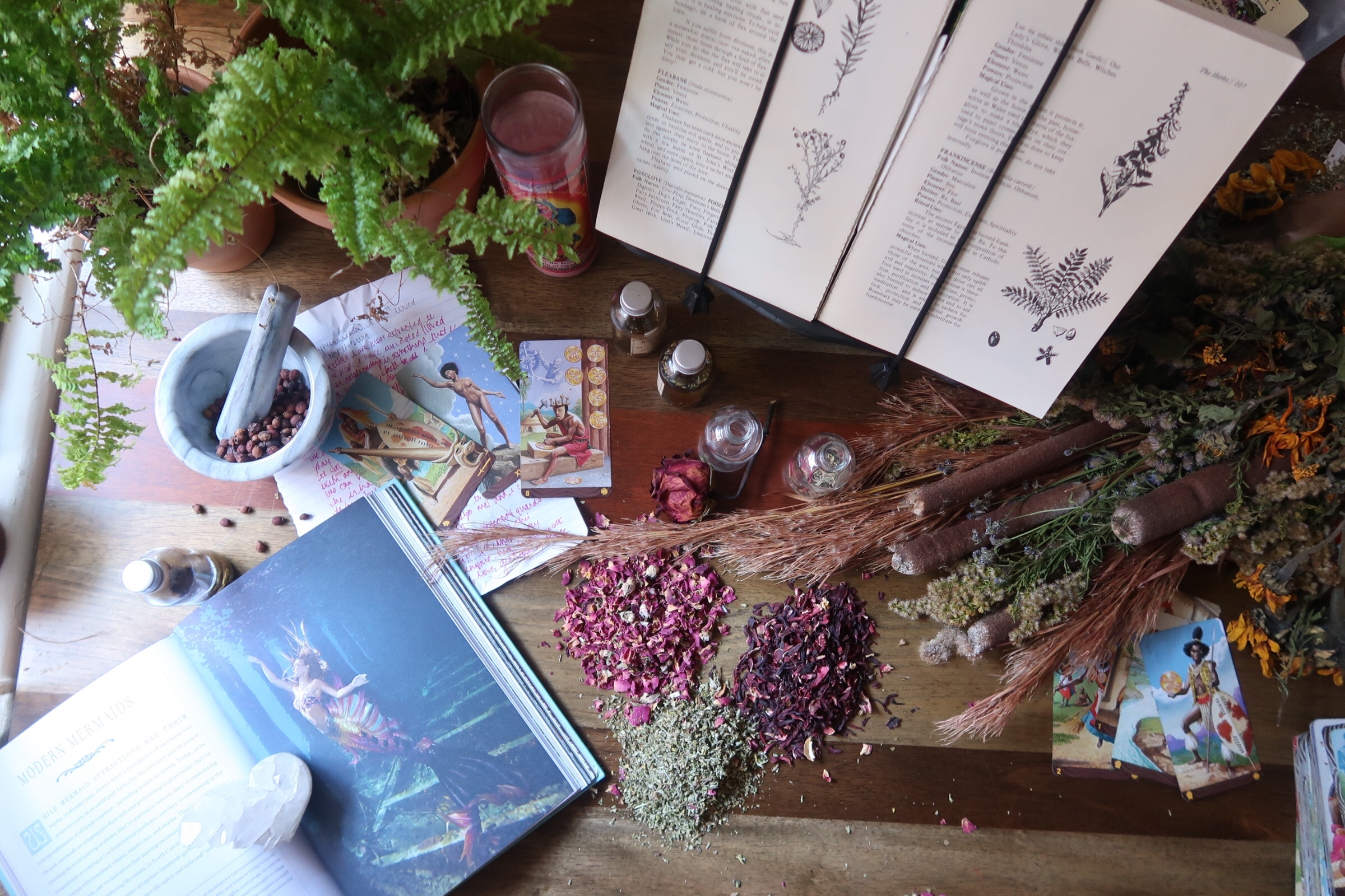 Learn the Tarot with Jess of BehatiLife - An exclusive private group for studying the tarot with Jess as our guide!