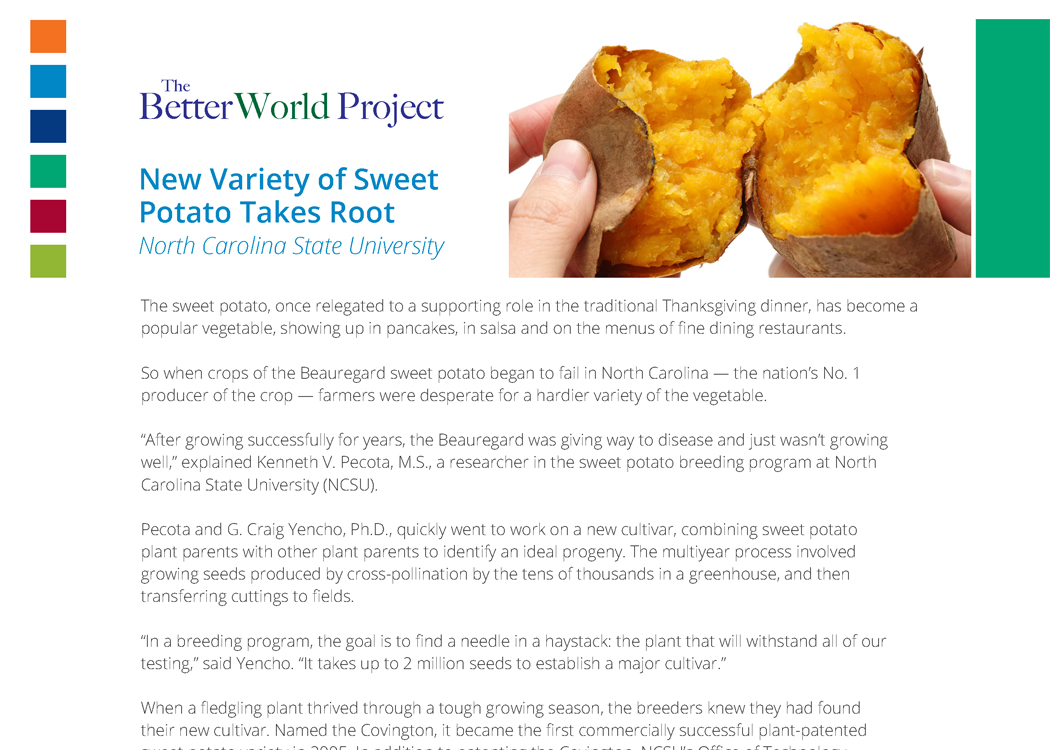 story_sweet_potato.jpg