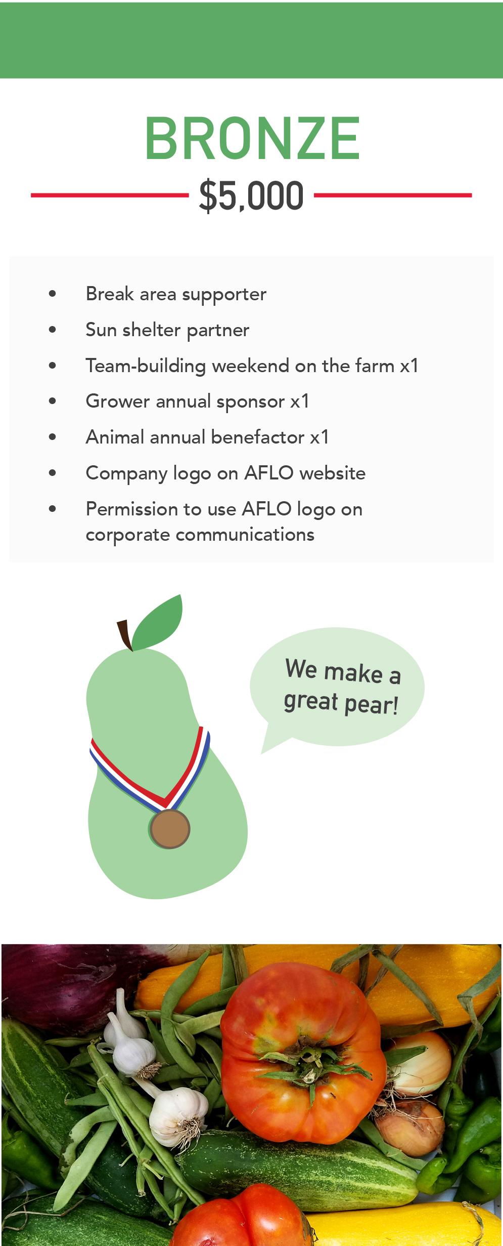 20190410_AFLO Brochure Bronze.jpg