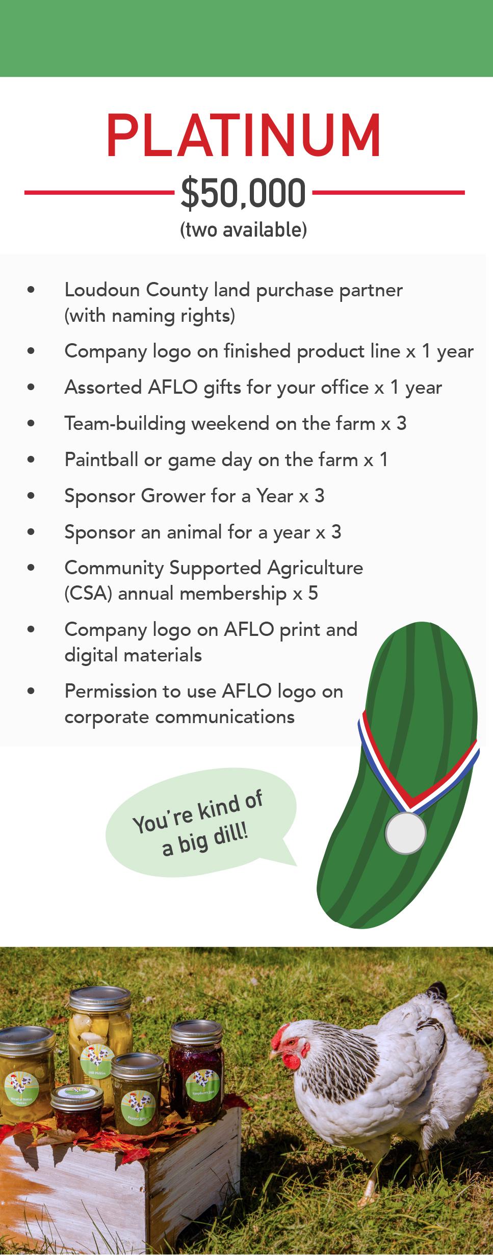 20190410_AFLO Brochure Platinum.jpg