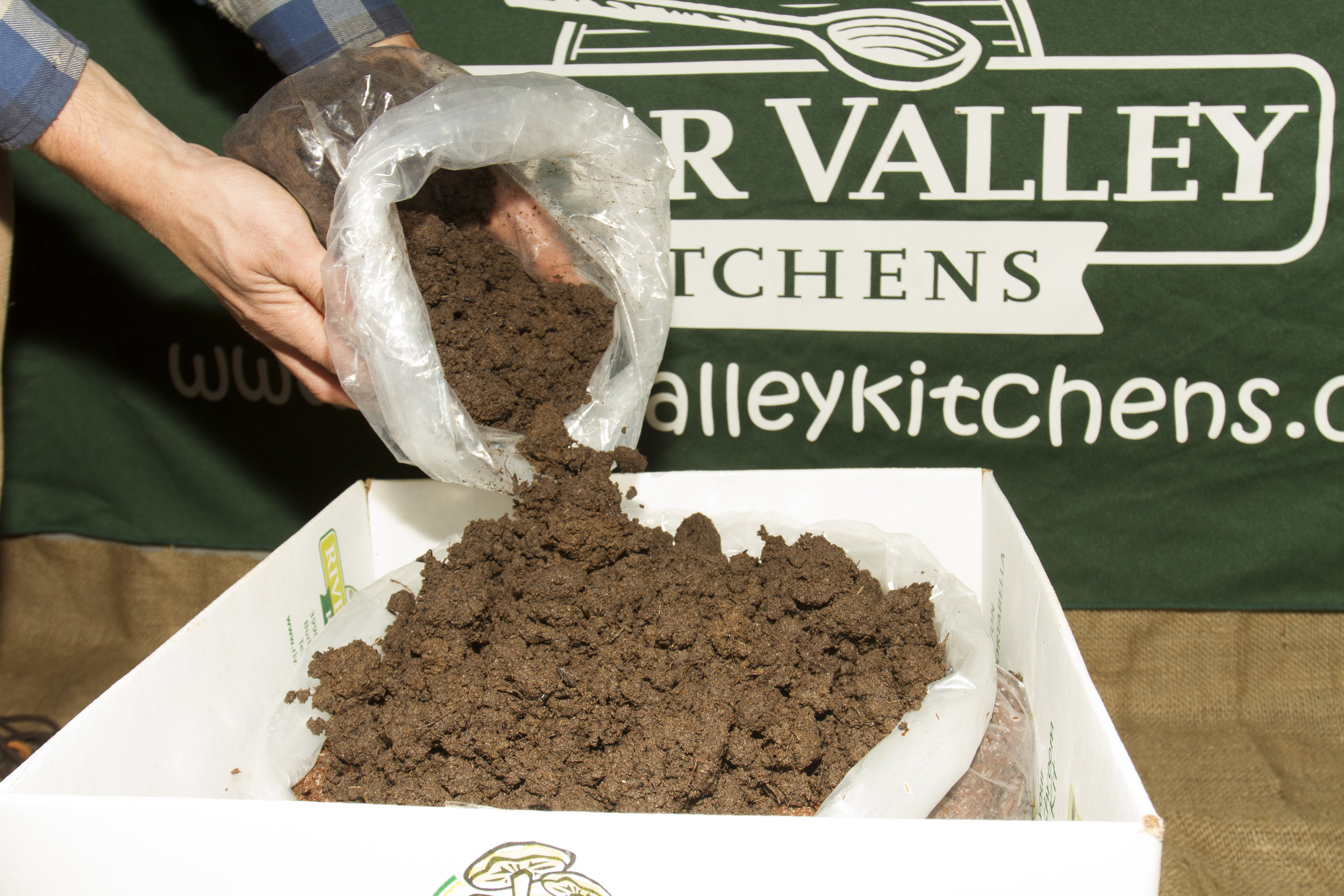 Step 1: Place all the peat moss (casing soil) from the small bag onto the surface of the large bag. This is the casing oil.  Take a mental note of how moist this is, this is how moist you want to keep the kit during all stages of growth.