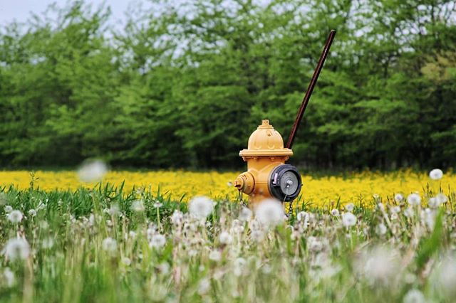 Even hydrants get tired of the city.