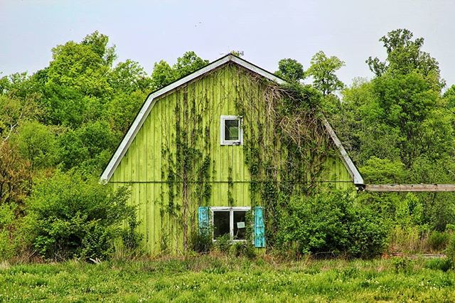 El Barn. . . . . . . #usacountryside #countryside #abandonedplaces #abandonedbuilding #instaabandoned #green #verygreen #oldbarn #justchill #justchillin #nature #farmer #instafarm #instagreen #travel #instatravel #lifetrip #illinois #indiana #midwest #imnotaphotographer #gooutside #go #goout #symetry #forests