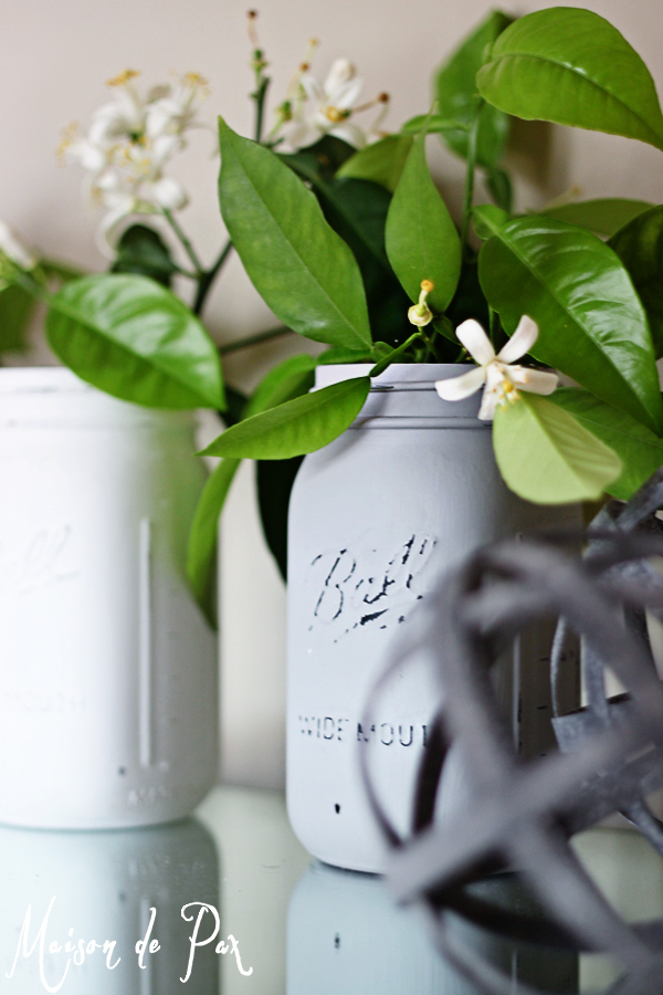 Country Chic Paint on Mason Jars
