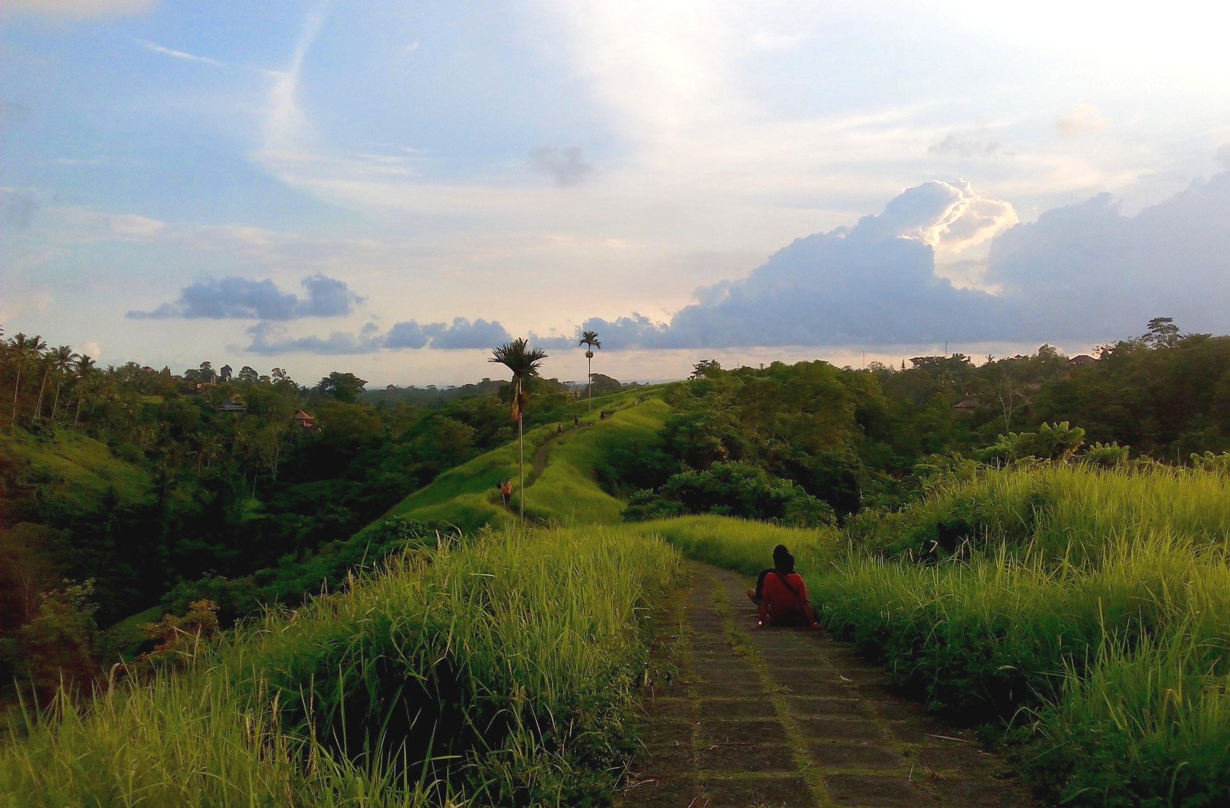 Campuhan Ridge Walk, Ubud, Bali, Indonesia