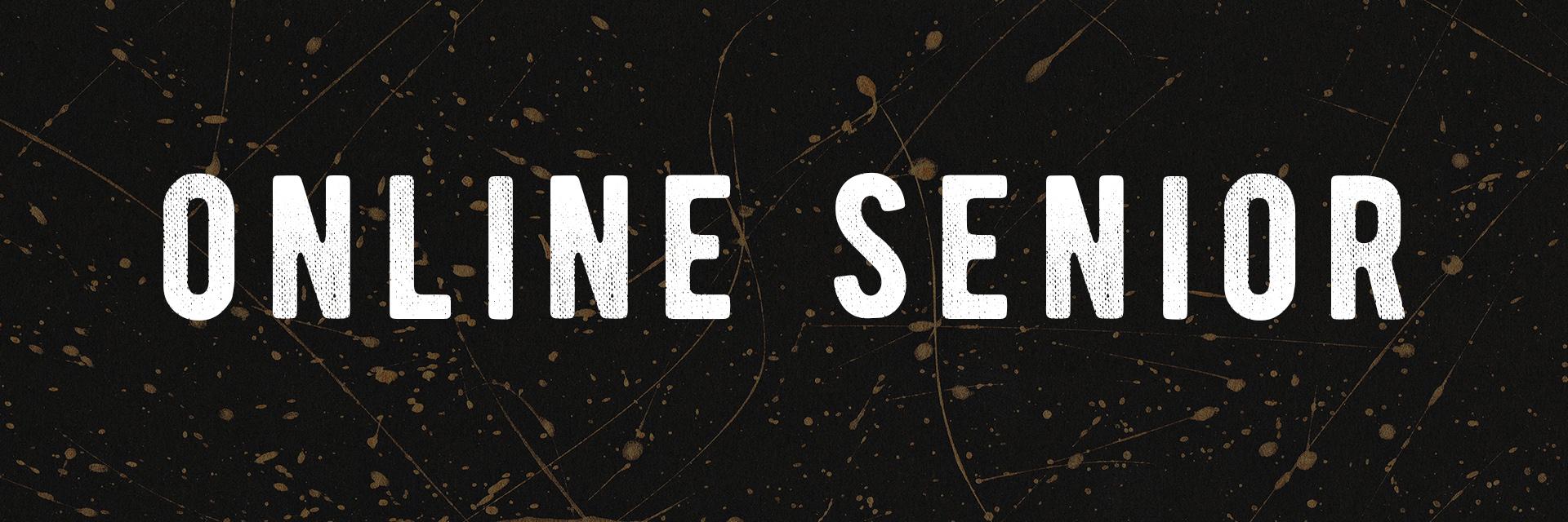 online senior.jpg