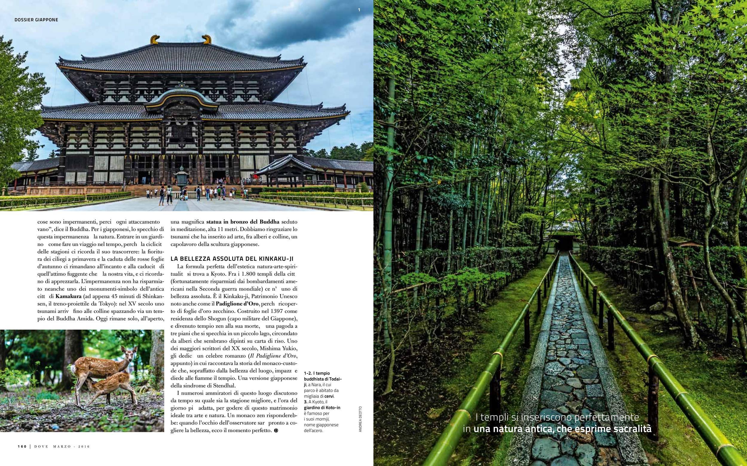 Japan reportage