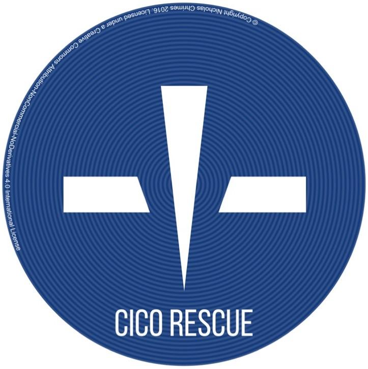 CICO Text Copyright.jpg
