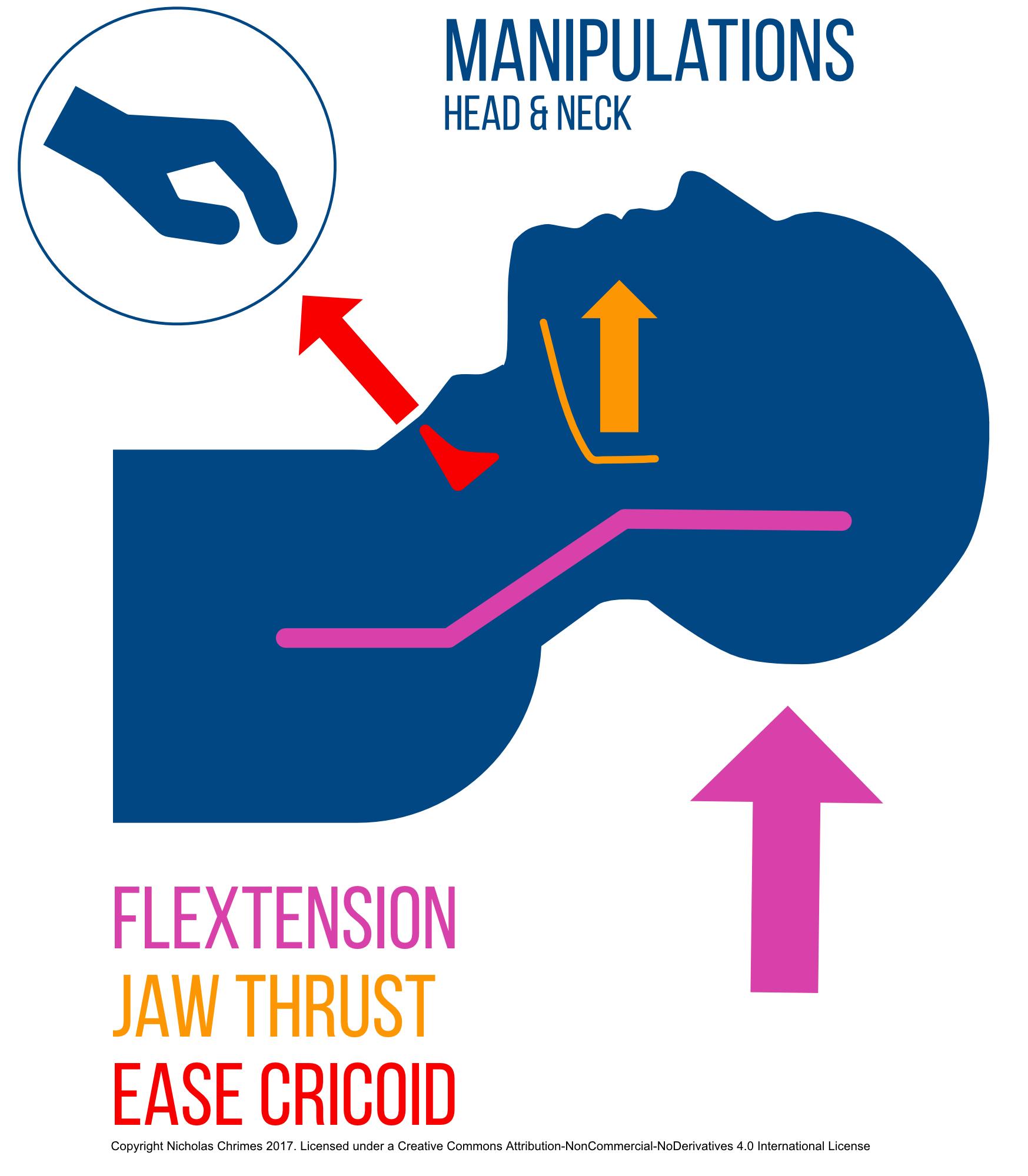 FMV Head, Neck & Larynx Manipulations